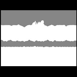 Ladies with Tradies Logo